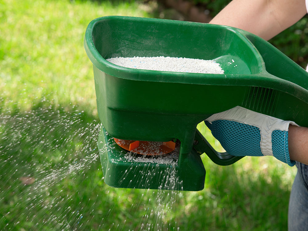 Keep your lawn Green and healthy with Spring and winter fertilization.